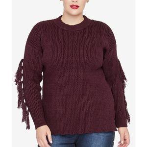 Racheal Roy trendy plus size tassel trim sweater